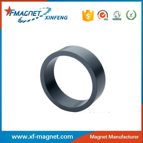 Radial Ring Permanent Magnet