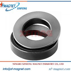 Black Epoxy Radial Ring Magnet
