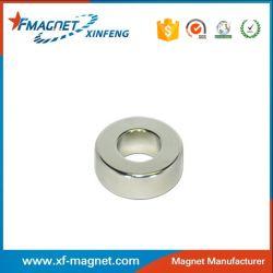 Rare Earth Magnet Motor
