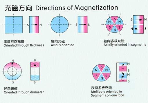 magnet trade show